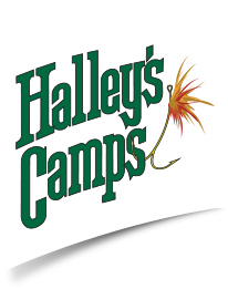 Halley's Camps