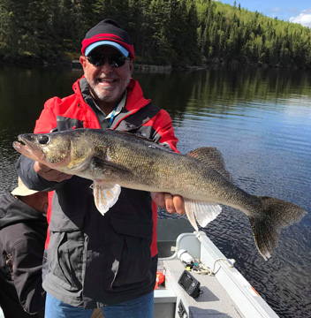 A beautiful late-season walleye in the boat.